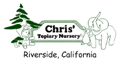 Chris' Topiary Nursery